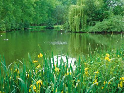 L'espace vert des Hautes-Fontaines et la Citadelle